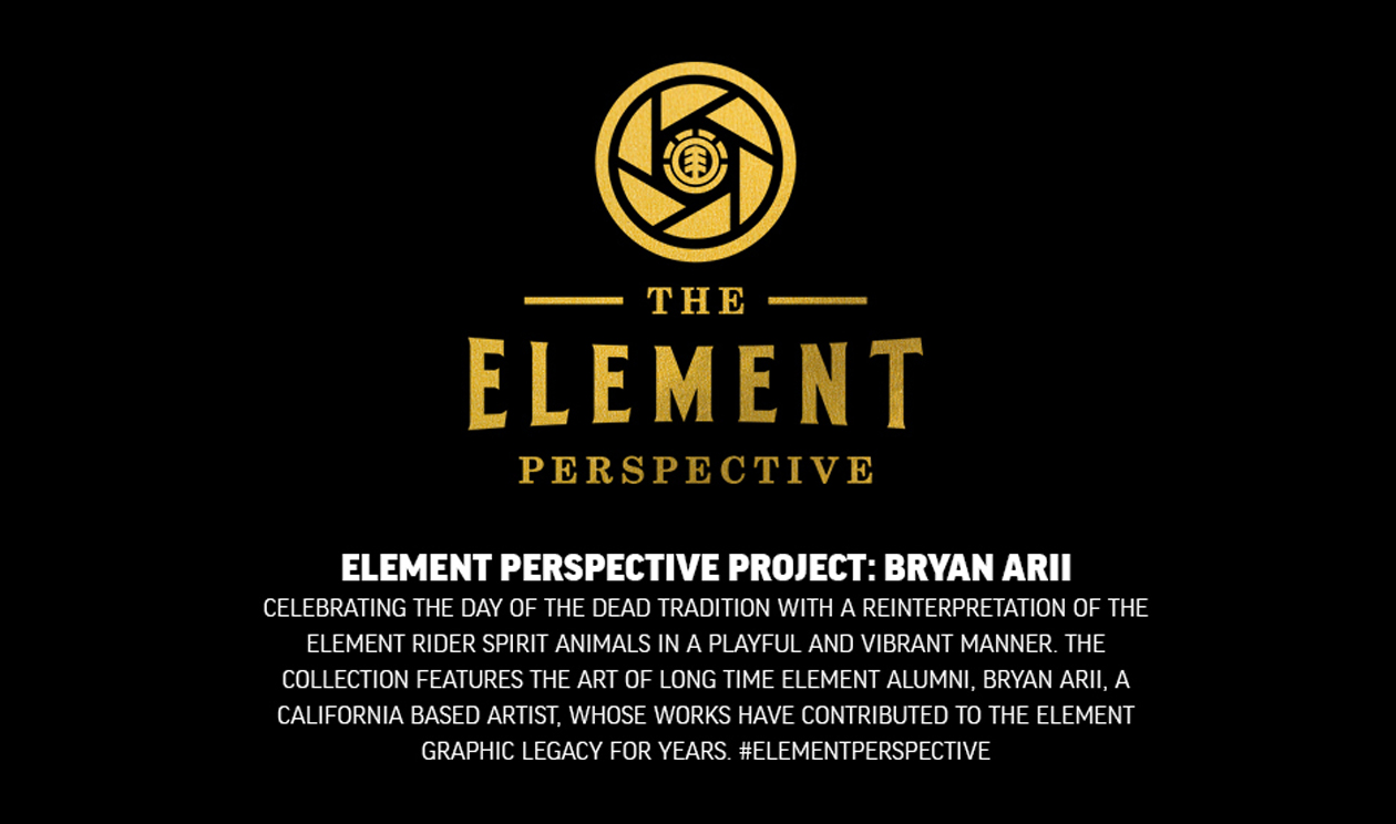 ELEMENT PERSPECTIVE PROJECT: BRYAN ARII