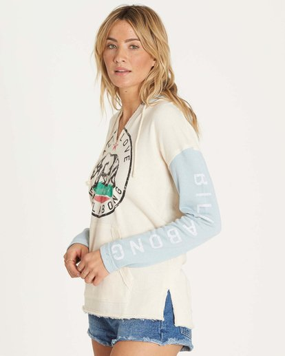 1 Days Off Pullover Hoodie Green J601NBDA Billabong