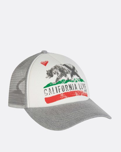 2 Pitstop Trucker Hat Grey JAHT7PIT Billabong