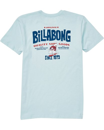 1 Boys (2-7) Grommit Tee Blue K401QBGR Billabong