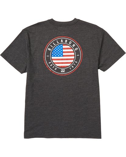 1 Native Rotor USA Tee Black M404QBUS Billabong