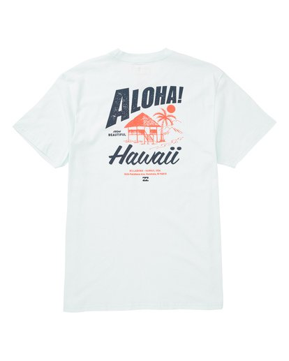 1 ALOHA Blue M404TBAL Billabong