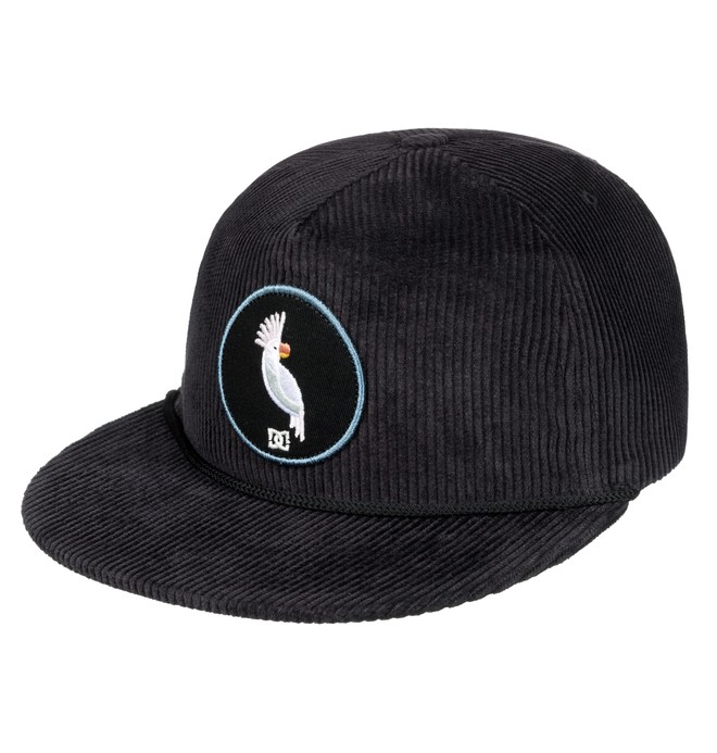 0 Birds Of Empire Snapback Hat  ADYHA03566 DC Shoes