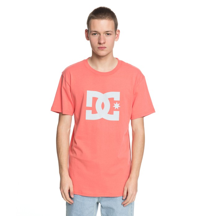 0 Men's DC Star Tee Pink ADYZT03119 DC Shoes