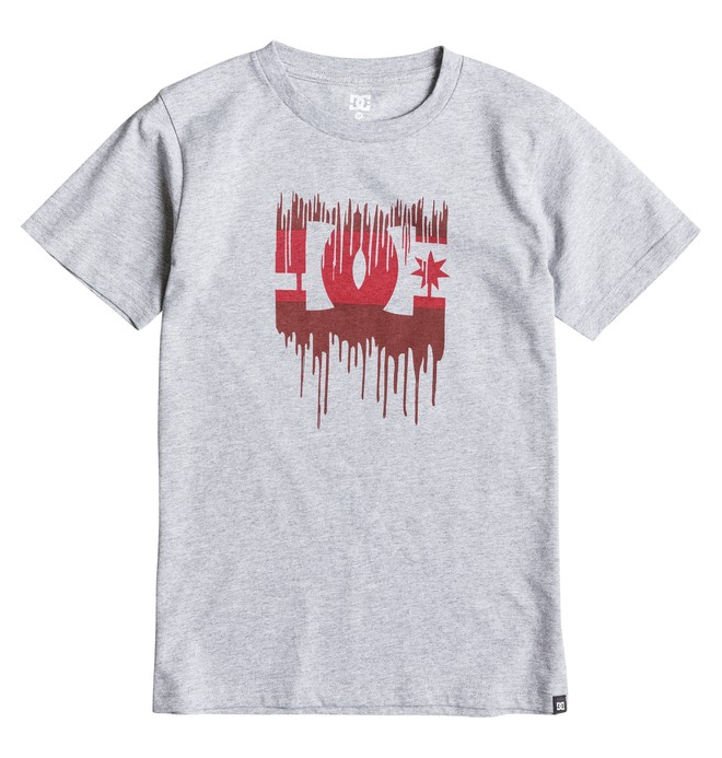 0 Melting - T-Shirt  EDBZT03129 DC Shoes