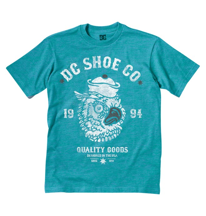 0 Kid's Owl Time Tee  K1200083 DC Shoes