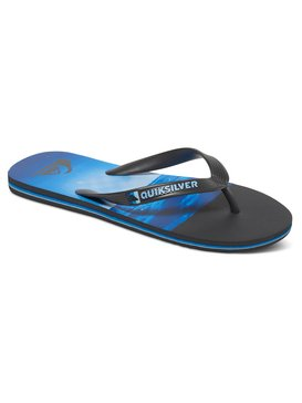 Molokai Hold Down - Flip-Flops for Men  AQYL100409