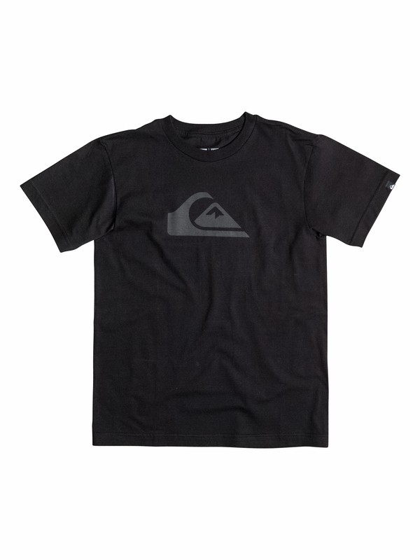0 Boys 2-4 Everyday Logo Core T-Shirt  40544019 Quiksilver