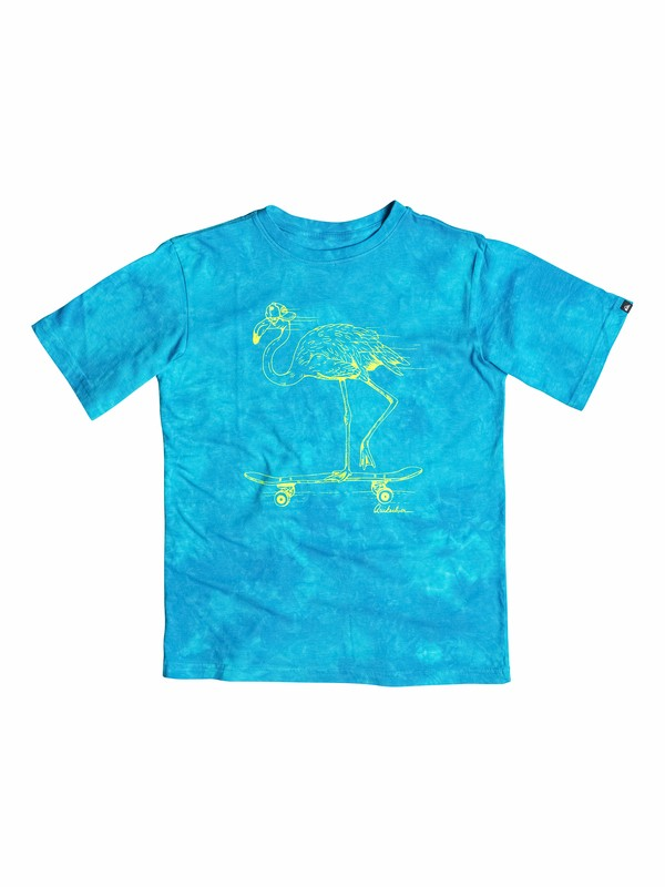 0 Boys 2-4 Rad Flamingo T-Shirt  40544177 Quiksilver
