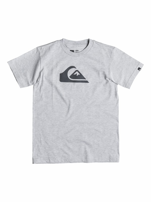 0 Boys 4-7 Everyday Logo Core T-Shirt  40554019 Quiksilver