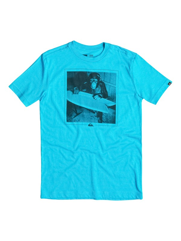 0 Boys 8-16 Shaping Banana T-Shirt  40664176 Quiksilver