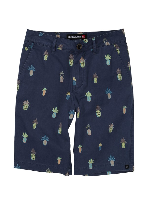 0 Boys 2-7 Pine Berry Shorts  AQKWS00083 Quiksilver