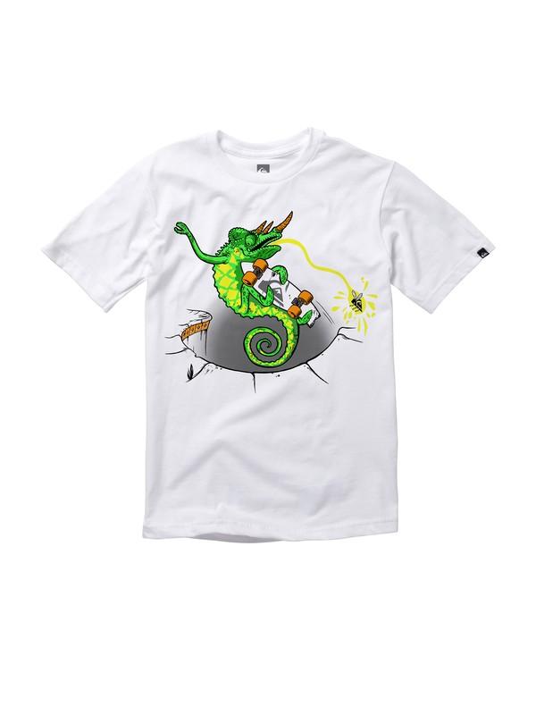 0 Boys 2-7 Chameleon Solar Ink T-Shirt  AQKZT00300 Quiksilver