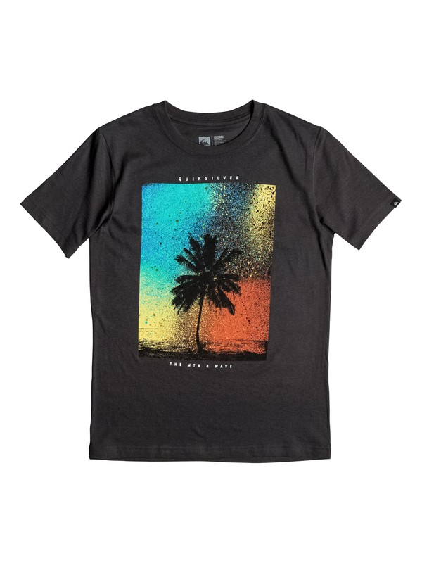 0 Boys 2-4 Spray Palm T-Shirt  AQKZT03160 Quiksilver