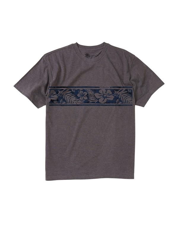 0 Men's Disbanded T-Shirt  AQMZT00094 Quiksilver