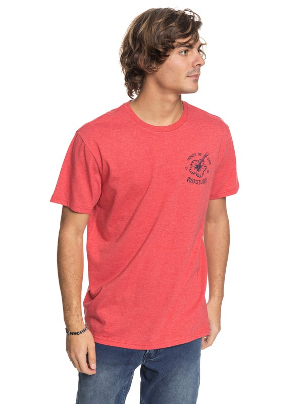 0 Promote The Stoke - T-Shirt  AQYZT05442 Quiksilver