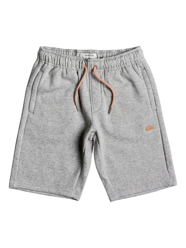 0 Everyday - Sweat Shorts Gray EQBFB03034 Quiksilver
