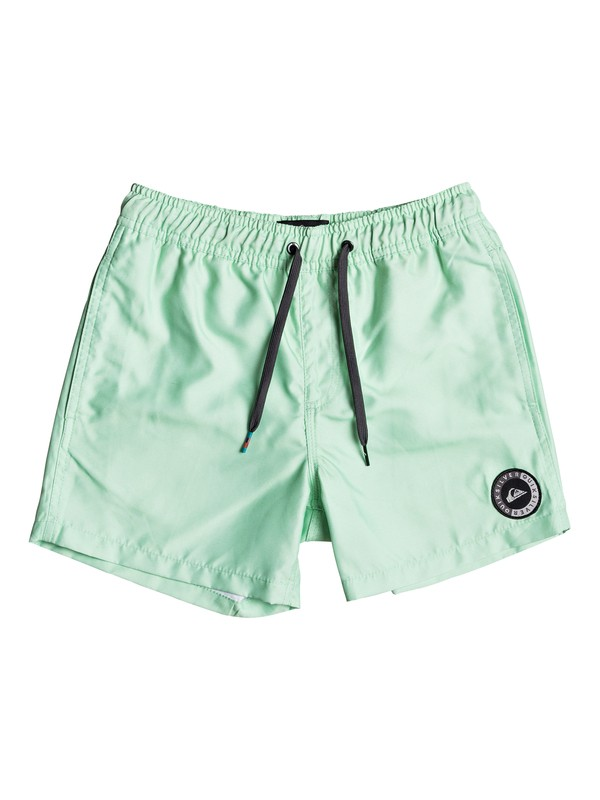 "0 Everyday 13"" - Swim Shorts Green EQBJV03141 Quiksilver"