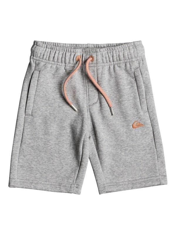 0 Everyday - Shorts de sport Gris EQKFB03049 Quiksilver