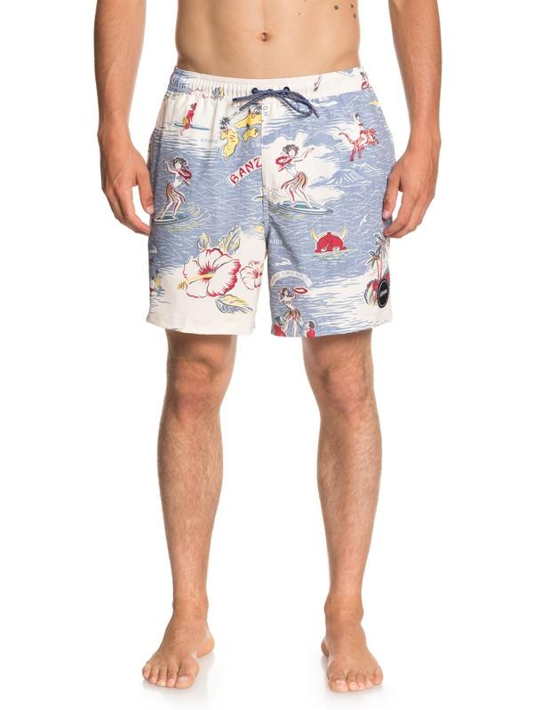 "0 Variable 17"" - Swim Shorts for Men Blue EQYJV03358 Quiksilver"