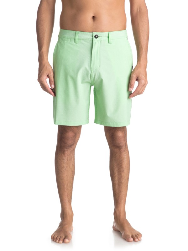 "0 Union Pinstripe 19"" - Amphibian Board Shorts for Men Green EQYWS03490 Quiksilver"
