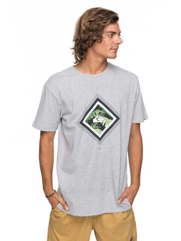 0 Classic Crimson Skyline - Camiseta para Hombre Gris EQYZT04781 Quiksilver