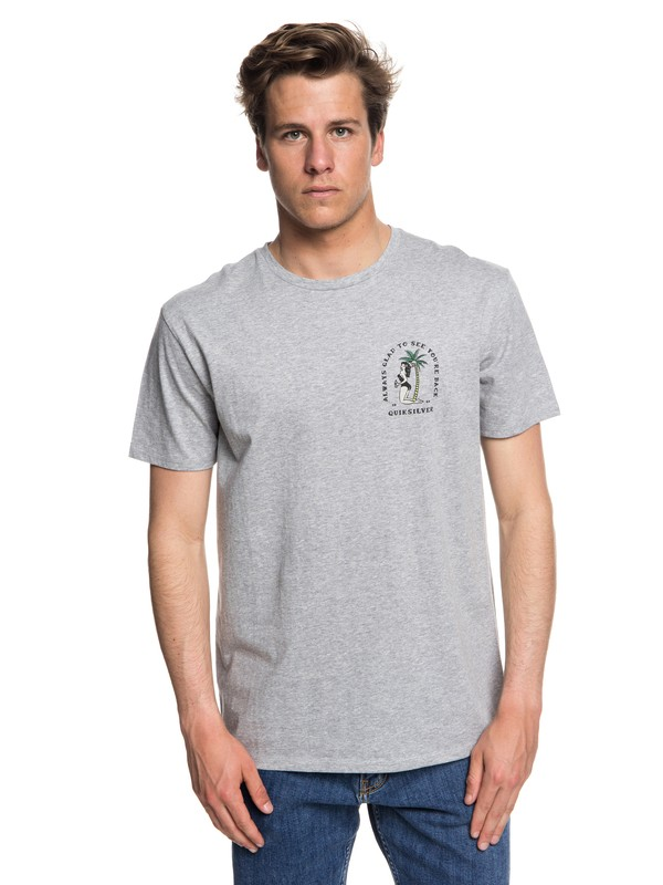 0 Glad You're Back - T-Shirt Grey EQYZT05019 Quiksilver